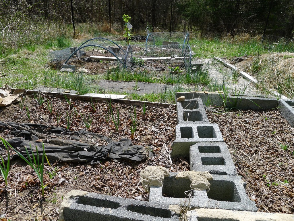 the state of the beds, early April 2014